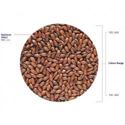 Ljus chokladmalt 1kg Hel