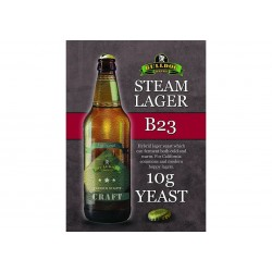Bulldog B23 Steam Lager