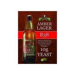 Bulldog B38 Amber Lager